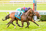 SEPT 07, 2019 : Spanish Mission with Jaimie Spencer, wins the $1,000,000 Jockey Club Derby Invitational Stakes, for 3 year olds going 1 1/2 mile on turf, at Belmont Park, in Elmont, NY, Sept 7, 2019.  Sue Kawczynski_ESW_CSM,