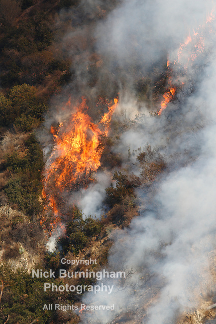 GLENDORA, CALIFORNIA, USA - JANUARY 16, 2014: A large wildfire burns out of control in the hills above Glendora. Firefighters, helicopters and aircraft from many jurisdictions work to control it.