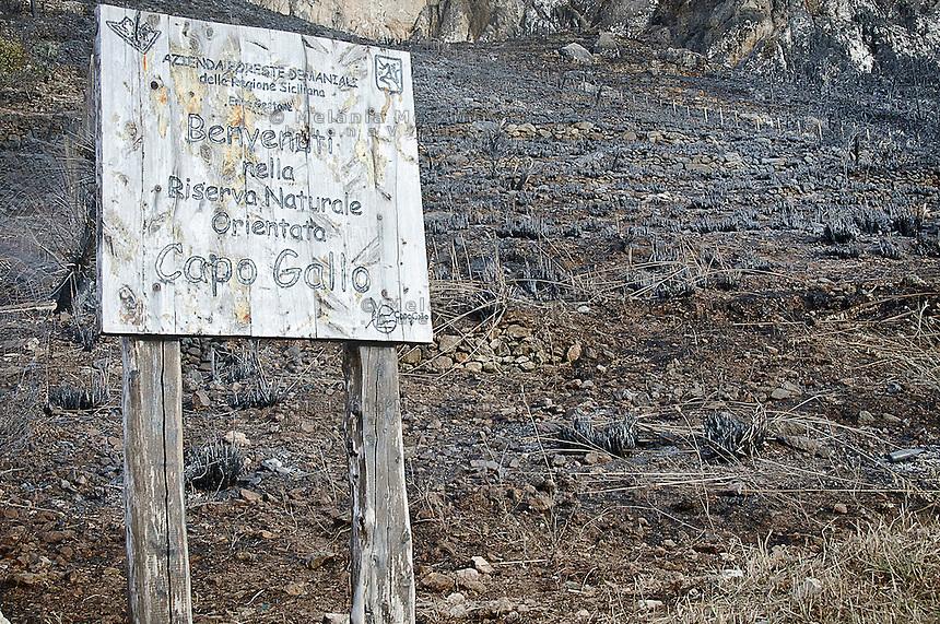La riserva naturale di Capo Gallo devastata dall'incendio quasi certamente doloso del 16 giugno.<br /> The nature reserve of Capo Gallo In Sicily destroyed by an arson