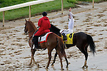 Calvin Borel aboard Super Saver celebrating after the Kentucky Derby.  May 01, 2010 Churchill Downs