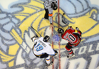 12/1/12 Cincinnati Cyclones at Toledo Walleye