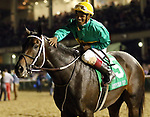 LOUISVILLE, KY - SEP 29: Hot Springs (jockey Ricardo Santana Jr.) wins the Jefferson Cup at Churchill Downs, Louisville, Kentucky. Owner Woodford Racing LLC; trainer Steve Asmussen; By Uncle Mo x Magical Victory, by Victory Gallop (Photo by Mary M. Meek/Eclipse Sportswire/Getty Images)
