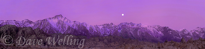 902000003 panoramic view of dawn alpenglow on the eastern sierras with a full moon setting over the sierras and the granite boulders of the alabama hills in kern county california
