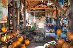 Pumpkin Barn Greene County