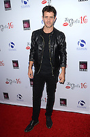 LOS ANGELES, CA - OCTOBER 16: Joey McIntyre at the National Breast Cancer Coalition Fund's 16th Annual Les Girls Cabaret at Avalon Hollywood on October 16, 2016 in Los Angeles, California. Credit: David Edwards/MediaPunch