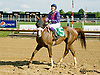 Tu For The Money winning at Delaware Park on 8/16/14