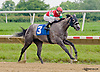 Star Destiny winning at Delaware Park on 6/20/13