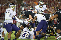 STANFORD, CA - October 5, 2013:  Stanford Cardinal quarterback Kevin Hogan (8) dives for a touchdown during the Stanford Cardinal vs the Washington Huskies at Stanford Stadium in Stanford, CA. Final score Stanford Cardinal 31, Washington Huskies  28.
