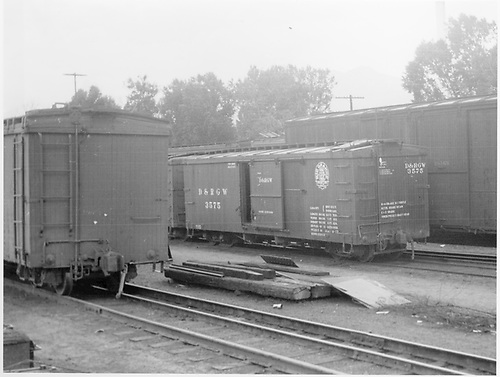 Box car #3575 in yard at Salida with standard gauge wooden box cars.<br /> D&amp;RGW  Salida, CO  Taken by Axt, Vernon