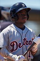 Detroit Tigers Ro Coleman (17) during a Minor League Spring Training game against the New York Yankees on March 21, 2018 at the New York Yankees Minor League Complex in Tampa, Florida.  (Mike Janes/Four Seam Images)