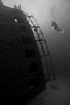 Grand Bahama Island, The Bahamas; a scuba diver hovers over the conning tower of Theo's Wreck, emerging from the deep blue, resting on it's port side this two hundred and thirty foot freighter, was intentionally cleaned and scuttled by UNEXSO in 1982 and sits in 100 feet of water