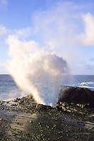 The Halona Blow hole can be seen as you drive along the eastern coastline of oahu. An observation area makes viewing the blow hole a convenient, must see stop for tourists.