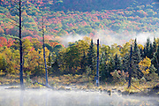 Autumn foliage around Wildlife Pond in Bethlehem, New Hampshire USA on a foggy autumn morning.