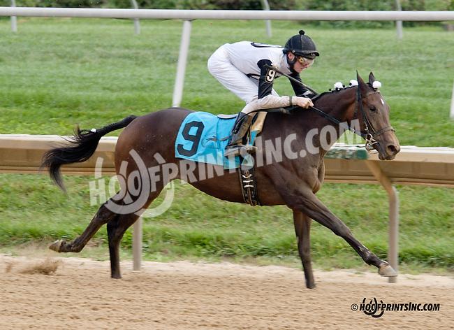 Speckles winning at Delaware Park on 9/14/13