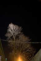 Trees lit by streetlights stand outside Fenway Park in Boston, Massachusetts, USA.