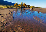 Gone by afternoon - An early morning stream flowing through The Great Sand Dunes National Park and Preserve during autumn, Colorado; USA