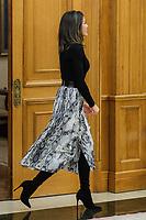 JAN 18 Queen Letizia Royal Audience
