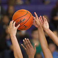 wild art from Stony Point-Cedar Ridge girls basketball game played January 4, 2014.