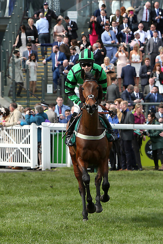 08.04.2016. Aintree, Liverpool, England. Crabbies Grand National Festival Day 2. Foxcub ridden by James Davies before the Alder Hey Children's Charity Handicap Hurdle.