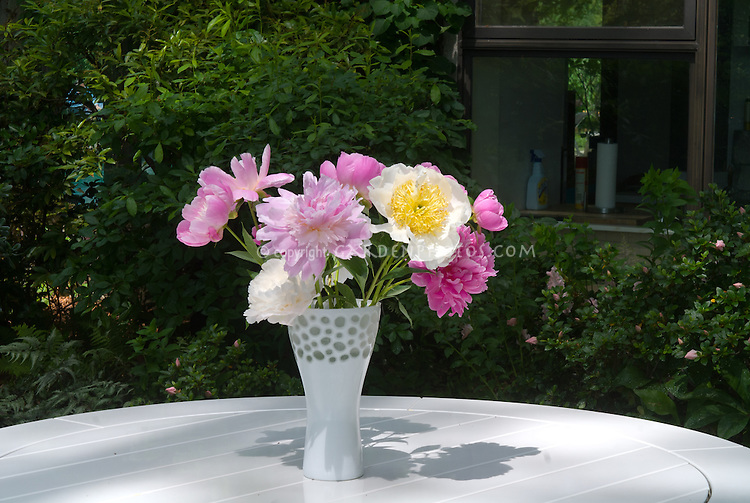 Flower Arrangement Of Cut Peonies In Vase On Table Outdoors Plant