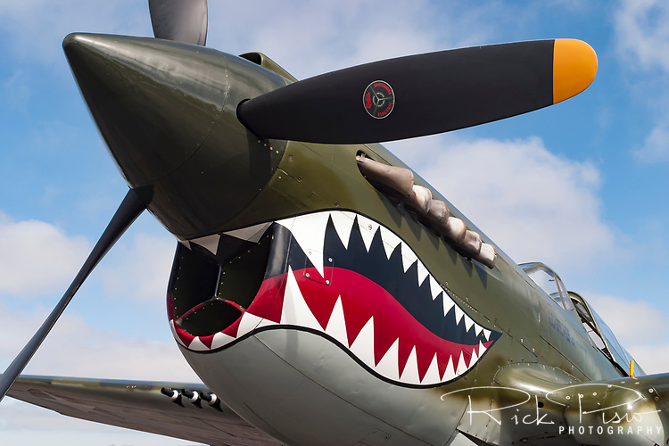 The Curtiss Aircraft Co.'s P-40 Warhawk fighter was the last of the &quot;Hawk&quot; line of aircraft produced in the 1930's &amp; 40's. An early prototype version of the P-40 was the first American fighter capable of speeds greater than 300 MPH. <br /> <br /> Utilized in most theatres of the Second World War the aircraft was used to great effectiveness by Claire Chenault's American Volunteer Group, the Flying Tigers. Even with the success of the Flying Tigers in China against the Japanese the P-40's performance was quickly eclipsed by the newer aircraft of the time.