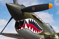 Aviation:Warbirds