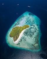coral reef, tropical islands, Raja Ampat Islands, West Papua, Indonesia, Indo-Pacific Ocean