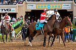 """DEL MAR, CA  AUGUST 17:  #9 Acclimate, ridden by Florent Geroux, in the post parade of the Del Mar Handicap (Grade ll) Breeders' Cup """"Win and You're In"""" Turf Division, on August 17, 2019 at Del Mar Thoroughbred Club in Del Mar, CA.(Photo by Casey Phillips/Eclipse Sportswire/CSM)"""