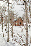 USA, California, Mammoth, a cabin peaking through the freshly covered woods near Convict Lake