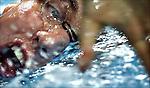 ZILVEREN CAMERA NOMINATIE SPORT enkel.<br /> <br /> EK Zwemmen korte baan. Pieter van den Hoogenband won vrijdag zilver op de 50meter vrije slag.