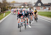 Mikkel Bjerg (DEN/Hagens Berman Axeon)<br /> <br /> 74th Nokere Koerse 2019 <br /> One day race from Deinze to Nokere / BEL (196km)<br /> <br /> ©kramon
