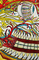Medical chart of the human body created over 100 years ago showing the inner workings as interpreted by the doctors then. A piece of art in itself depicting an abstract perspective of the miraculous body. Depicted here the arteries and nerves surrounding the human eye and jaw.
