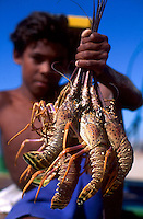 Lobster fishing, dark-skinned boy holds a bunch of lobsters for sale at the beach, Ceara State shore near Fortaleza, Brazil.
