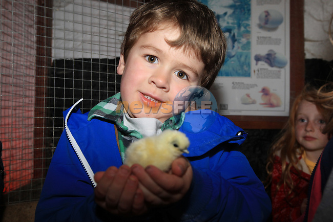 Oisin O'Reilly.at the new grange farm easter egg hunt..Picture Fran Caffrey www.newsfile.ie..