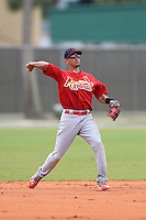 St. Louis Cardinals second baseman Ildemaro Vargas (15) during a minor league spring training intrasquad game on March 28, 2014 at the Roger Dean Stadium Complex in Jupiter, Florida.  (Mike Janes/Four Seam Images)