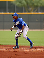 Geulin Beltre / Kansas City Royals 2008 Instructional League..Photo by:  Bill Mitchell/Four Seam Images