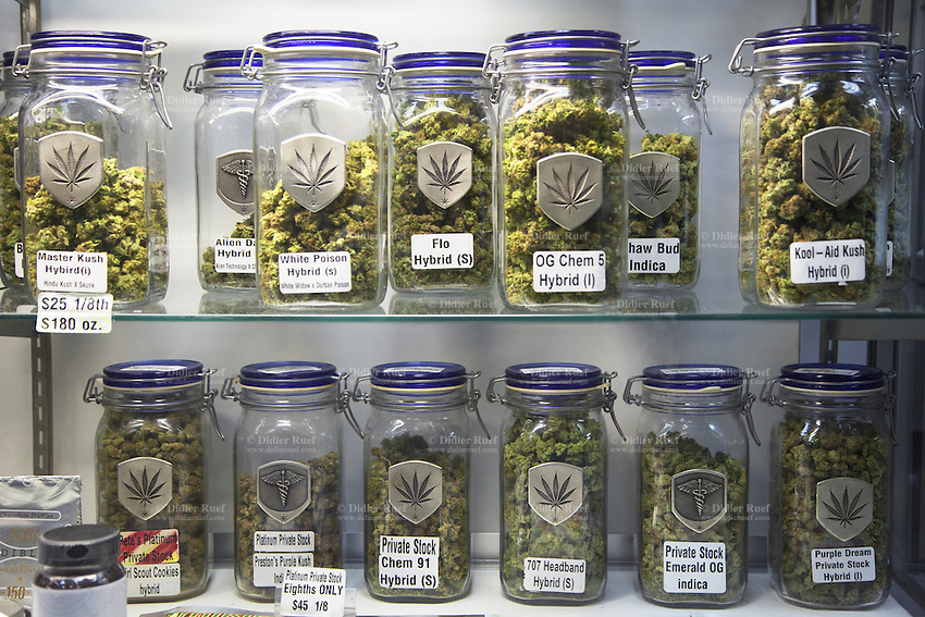USA. Colorado state. Denver. Glass jars kitchen dish full of marijuana buds in the medical counter section at Medicine Man. Medicine Man began nearly six years ago as a small medical marijuana operation and has since grown to be the largest single marijuana dispensary, both recreational and medical, in the state of Colorado and has aspirations of becoming a national brand if pot legalization continues its march. Cannabis, commonly known as marijuana, is a preparation of the Cannabis plant intended for use as a psychoactive drug and as medicine. Pharmacologically, the principal psychoactive constituent of cannabis is tetrahydrocannabinol (THC); it is one of 483 known compounds in the plant, including at least 84 other cannabinoids, such as cannabidiol (CBD), cannabinol (CBN), tetrahydrocannabivarin (THCV), and cannabigerol (CBG). 18.12.2014 © 2014 Didier Ruef