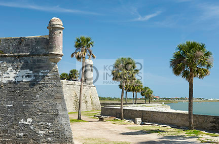 PALM TREES CASTILLO SAN MARCO NATIONAL MONUMENT MATANZAS BAY SAINT AUGUSTINE FLORIDA USA