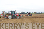 Ploughs in action on the Corridon Land Abbeydorney, Land were the Abbeydorney ploughing competition on Suinday.