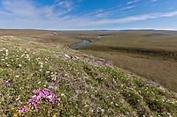 Utukok river, National Petroleum Reserve Alaska, Arctic, Alaska.