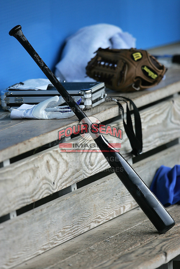Baseball bat and glove. Photo by Andrew Woolley / Four Seam Images.