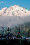 Mount Baker, Baker Lake, sunrise, Mount Baker National Forest, Washington State, Cascade Range, Pacific Northwest, U.S.A.,..