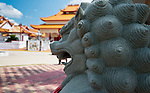 Chinese guardian lion known as Shishi lion gaurds the Teo Chew Temple / Ch&ugrave;a &Ocirc;ng Bon Temple. Located at 10599 Turtlewood Court<br /> in SouthWest  Houston, Tx.<br /> phone: (281) 983-0097