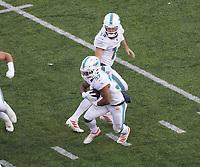 running back Myles Gaskin (37) of the Miami Dolphins bekommt den Ball vonquarterback Ryan Fitzpatrick (14) of the Miami Dolphins - 08.12.2019: New York Jets vs. Miami Dolphins, MetLife Stadium New York