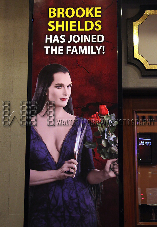 Brooke Shields as Morticia Addams ( Theatre Marquee ).at the Curtain Call for her debut in 'The Addams Family' at the Lunt-Fontanne Theatre  in New York City.