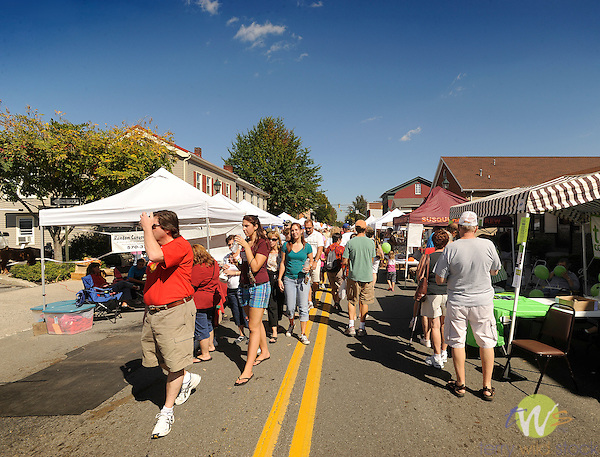 32nd Annual Selinsgrove Market Street Festival