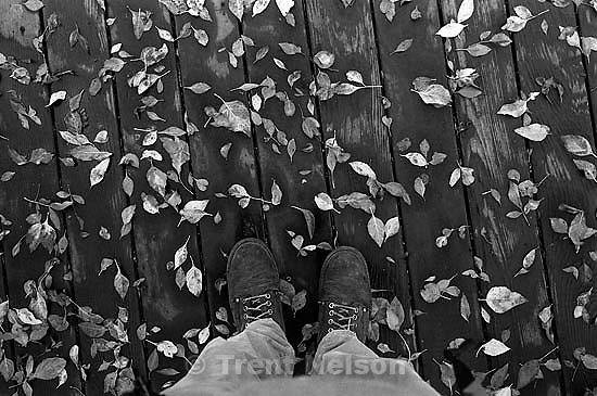 Trent feet and leaves<br />
