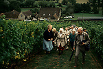 'WINE IN ENGLAND, SOMERSET', MRS GILLISPIE TAKES A PARTY AROUND THE VINEYARD AT NORTH WOOTTON, DURING THE SEASON SEVERAL PARTIES OF TOURISTS COME EACH DAY., 1989