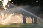 Water sprinkler in City Park in Denver, Colorado. .  John leads private photo tours in Boulder and throughout Colorado. Year-round Colorado photo tours.