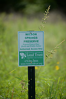 NWA Democrat-Gazette/ANDY SHUPE<br /> Saturday, Sept. 7, 2019, during a tour of the Wilson Springs Preserve in Fayetteville. The Northwest Arkansas Land Trust has been working for seven years to preserve and restore the 121-acre prairie wetland and opened the area to visitors with Immerse, a nature and arts festival.